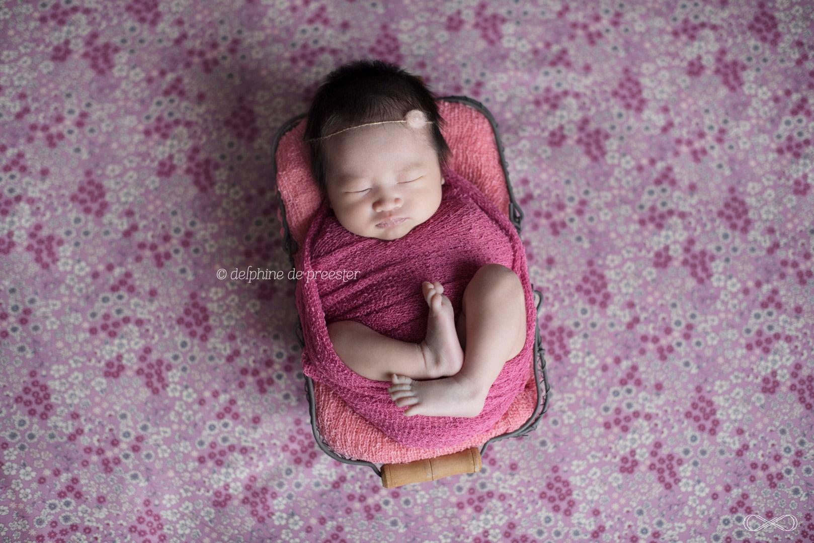 photos de bébé dans un panier