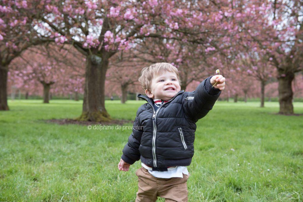 cueillir une marguerite dans un parc