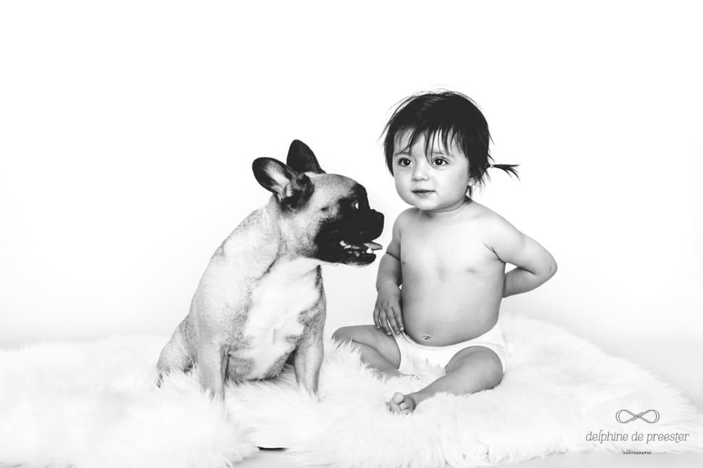 photo d'un bouledogue français avec un enfant